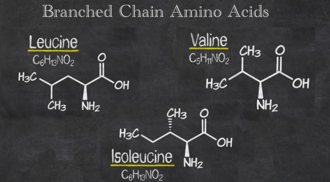 Branched Chain Amino Acids (BCAAs): The EDGE You're Looking For